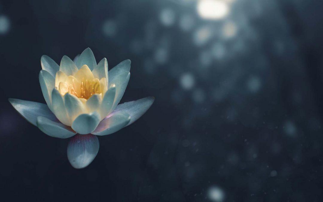 7 Korzyści z Medytacji Mindfulness